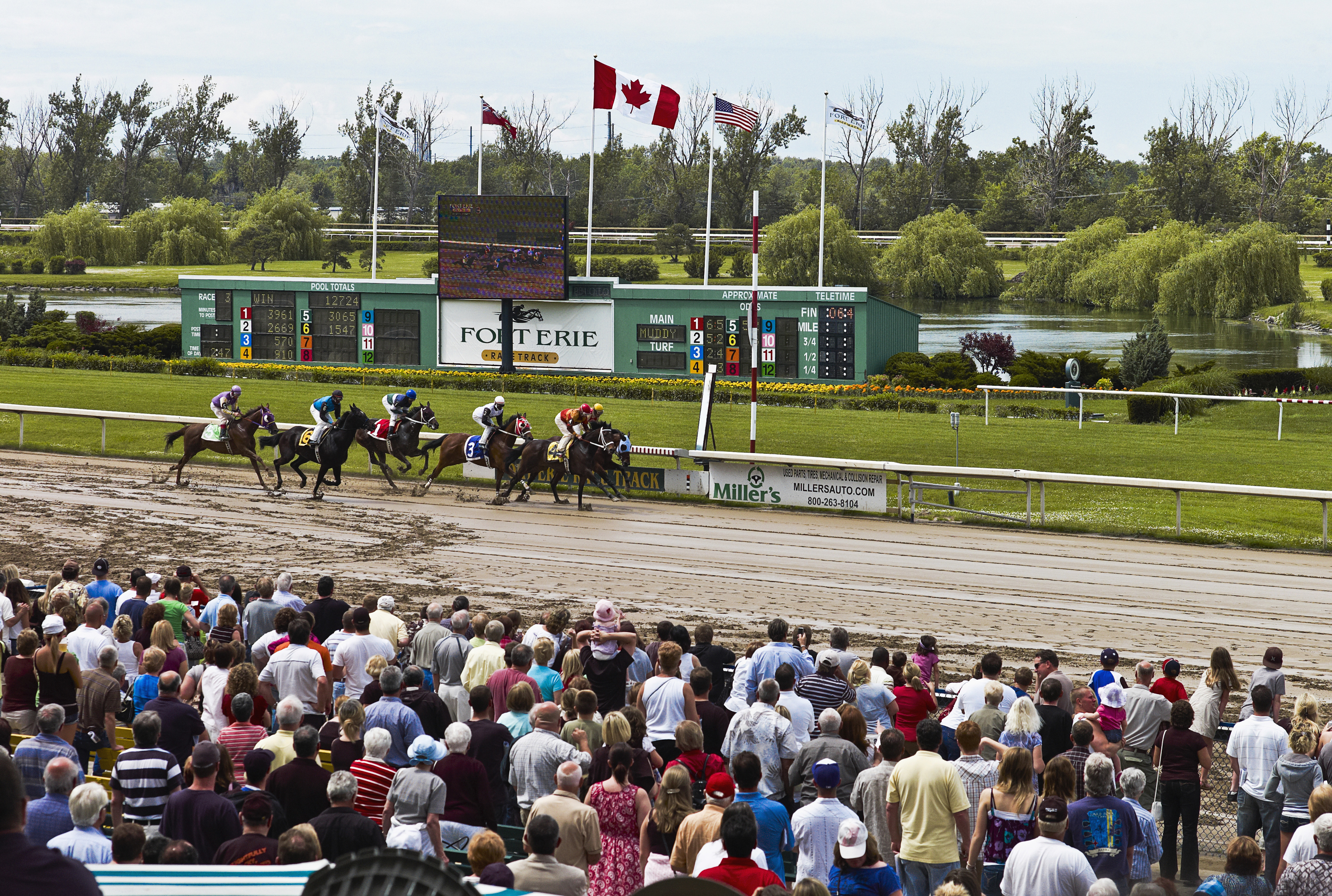 Canada, Ontario, Fort Erie, Race Track. (Photo by: Eye Ubiquitous/Universal Images Group via Getty Images)