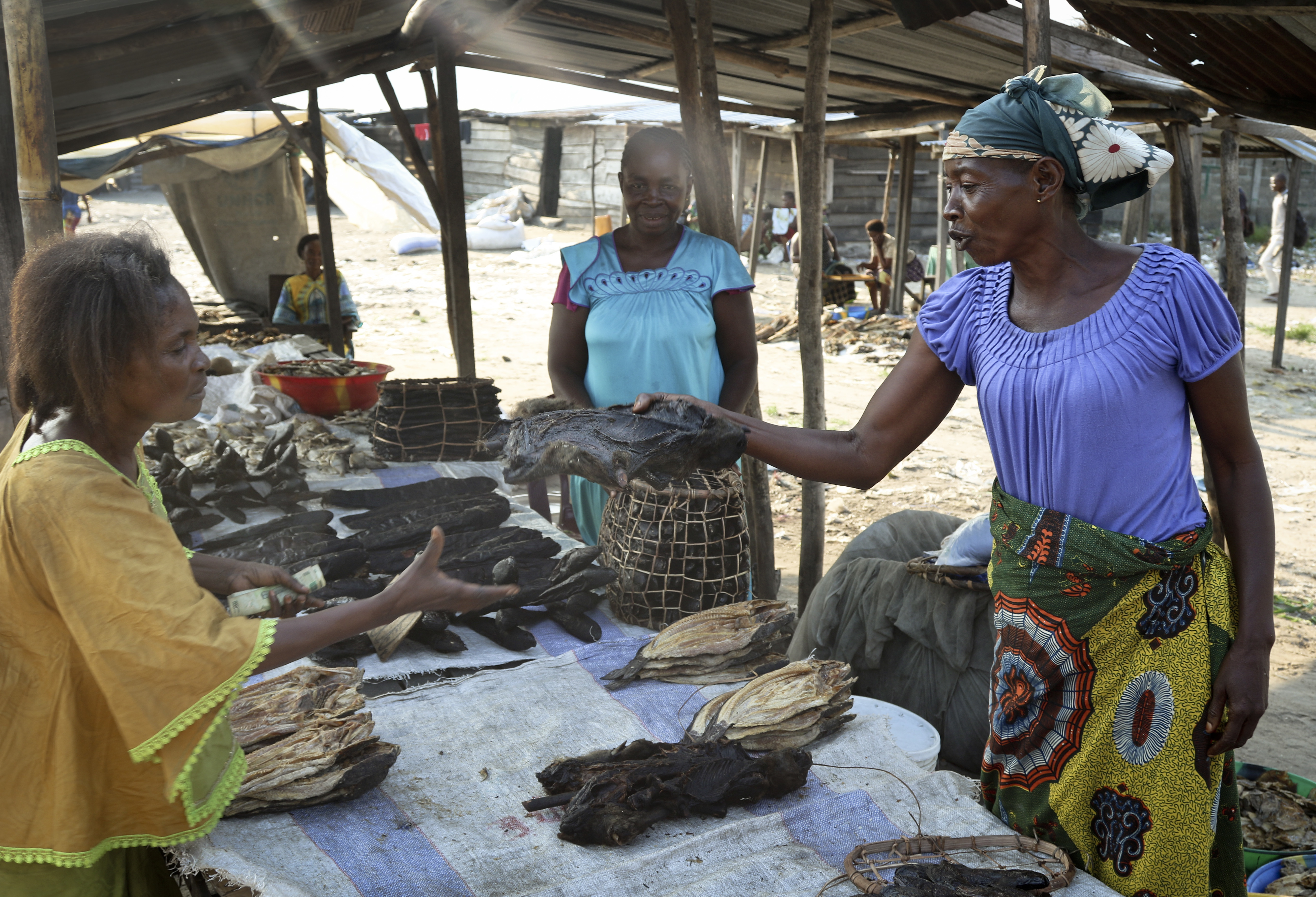 In this photo taken Tuesday, May 29, 2018, a street trader sells dried fish and smoked monkey meat at the port of Maluku in Kinshasa, Congo. Congo's latest deadly Ebola outbreak is hitting local traders of popular bush meat amid concerns about the virus jumping to humans from animals such as bats and monkeys. (AP Photo/John Bompengo)