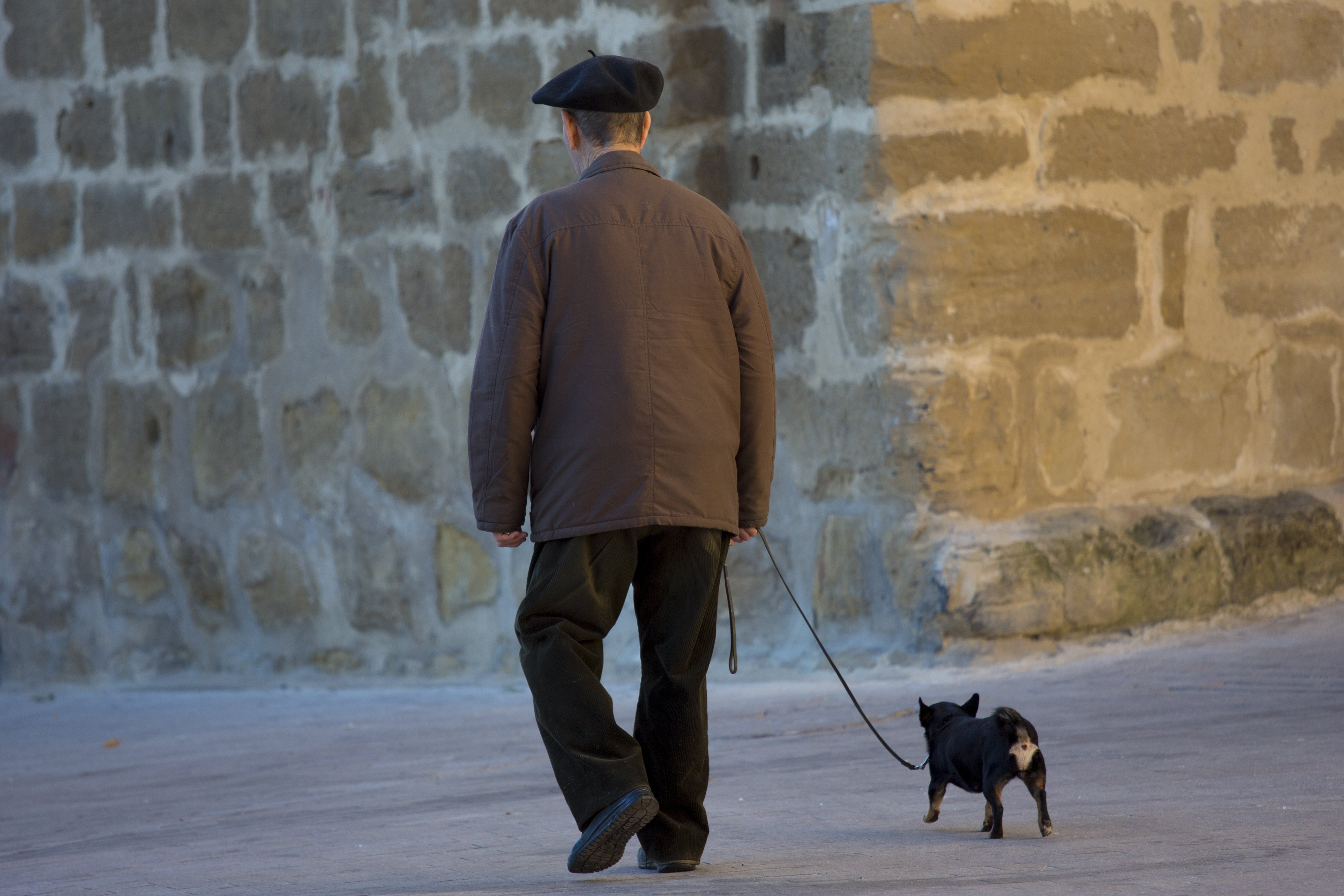 SPAIN - SEPTEMBER 15:  Old man walking his chihuahua dog in the streets of Laguardia, Northern Spain