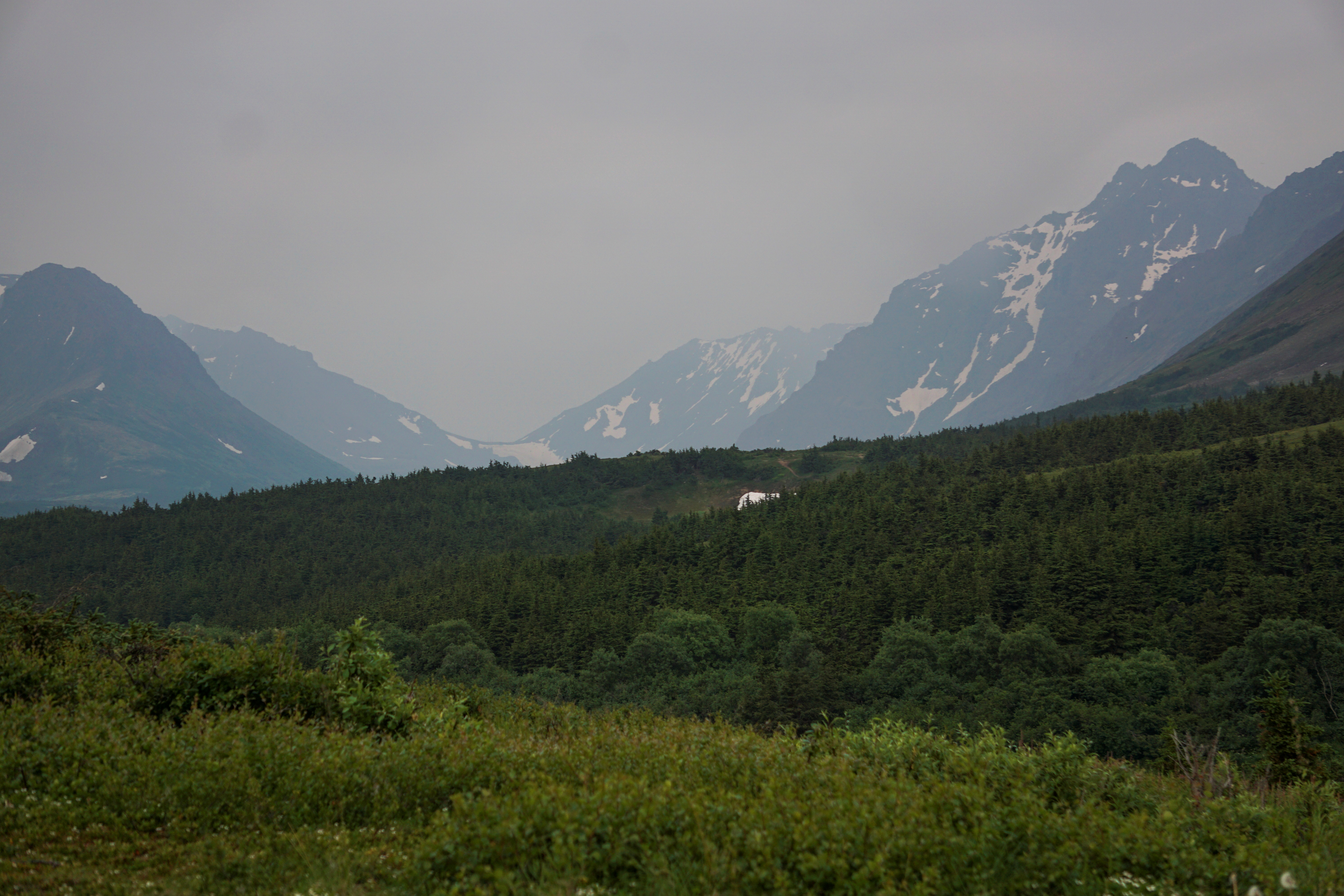 A general view of the mountain valley obscured by smoke taken from the Glen Alps trailhead of Chugach State Park in Anchorage, Alaska, U.S., June 29, 2019. Picture taken June 29, 2019. REUTERS/Yereth Rosen