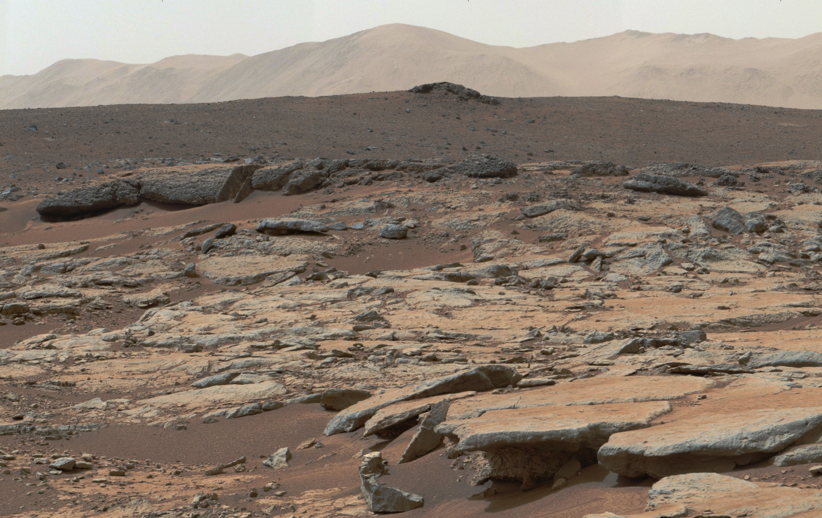 Can microscopic fossils be found on Mars by 2020 mission?
