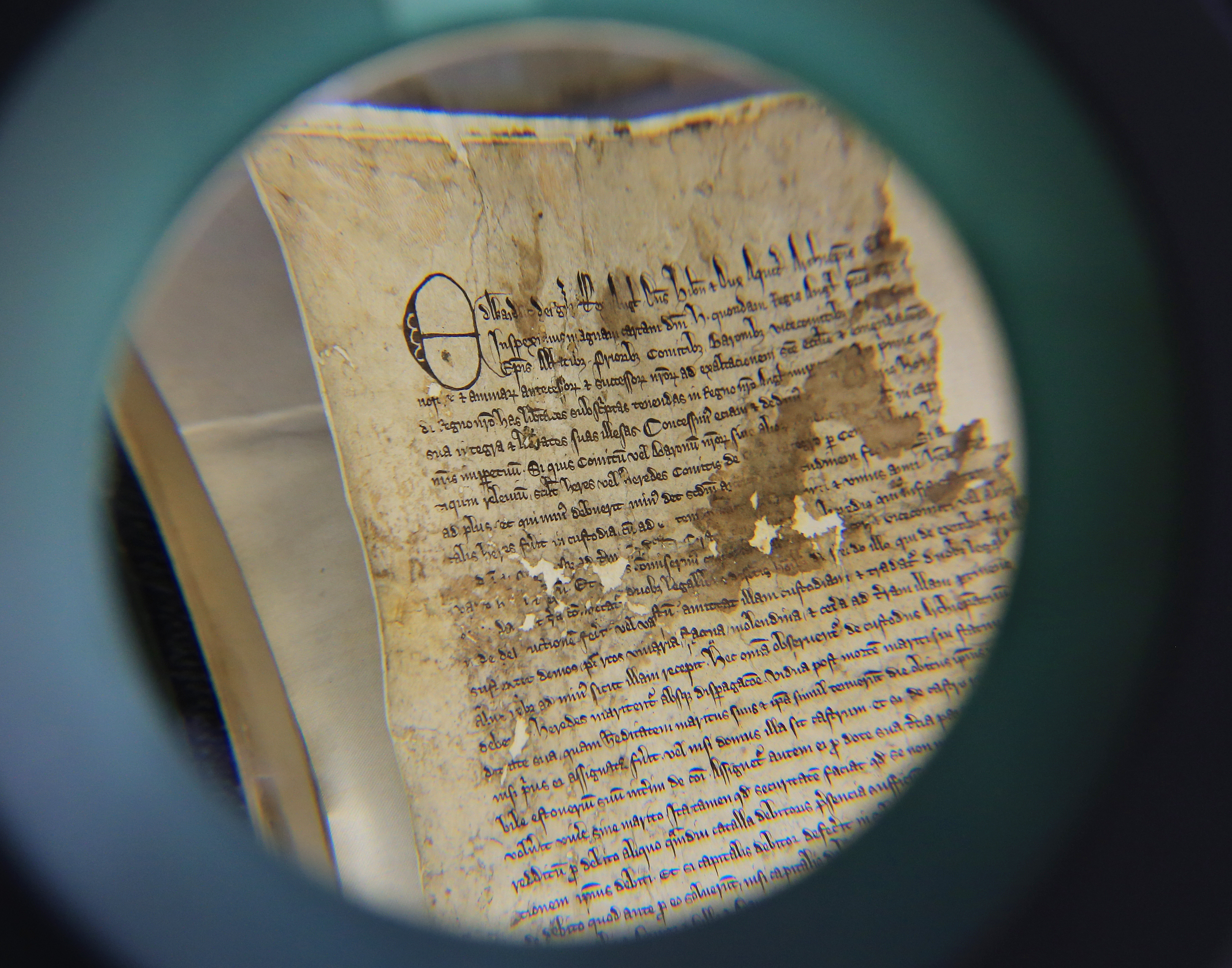 A view through a magnifying glass of part of an original Magna Carta from the issue made in 1300 by King Edward l to the borough of Sandwich in Kent which has recently been discovered in the archives at Kent County Council's Kent History and Library Centre in Maidstone.