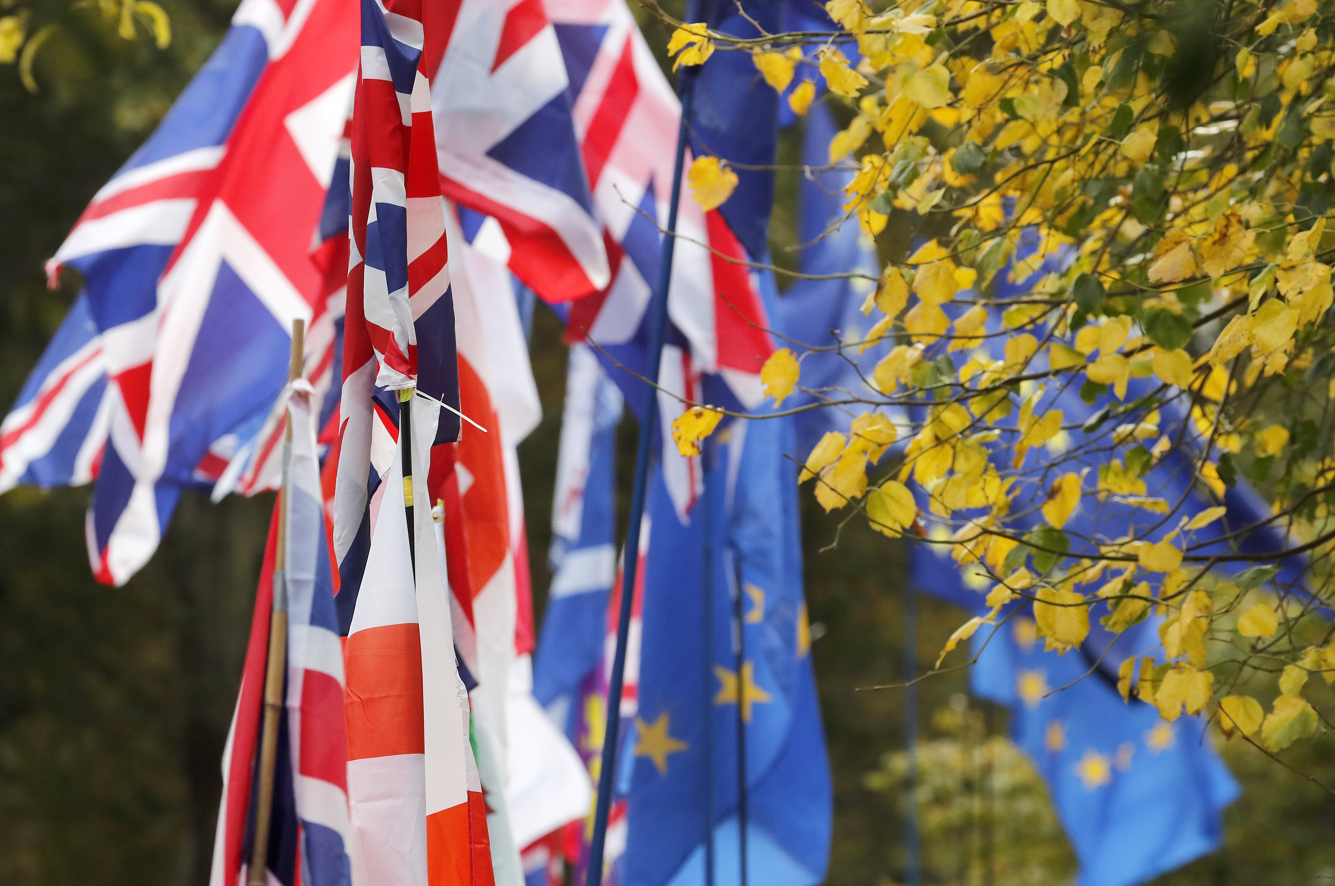 Flags fly outside parliament in London