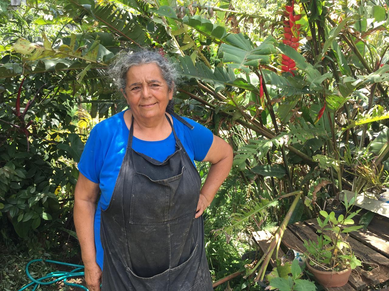 Cidades sem Fome: A ONG que transforma terrenos abandonados em hortas orgânicas