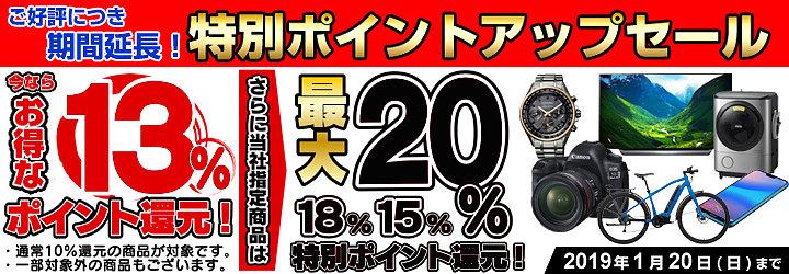 yodobashi_and_bic_sales