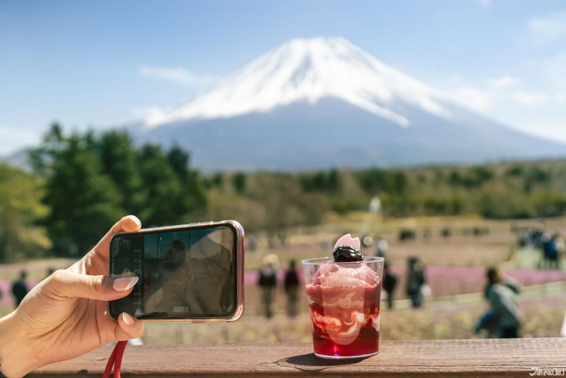 櫻花與山梨產的葡萄製作的義式冰淇淋,是2019富士芝櫻祭會場內的限定甜點之一。