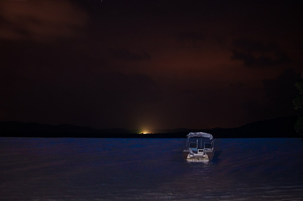 (Photo by Edgar Torres, License: CC BY 3.0, 圖片來源commons.wikimedia.org/wiki/File:Mosquito_bay,_Bioluminescent_bay,_Vieques_-_panoramio_(3).jpg)