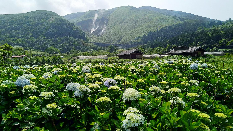 (圖片來源:台北市政府產業發展局)
