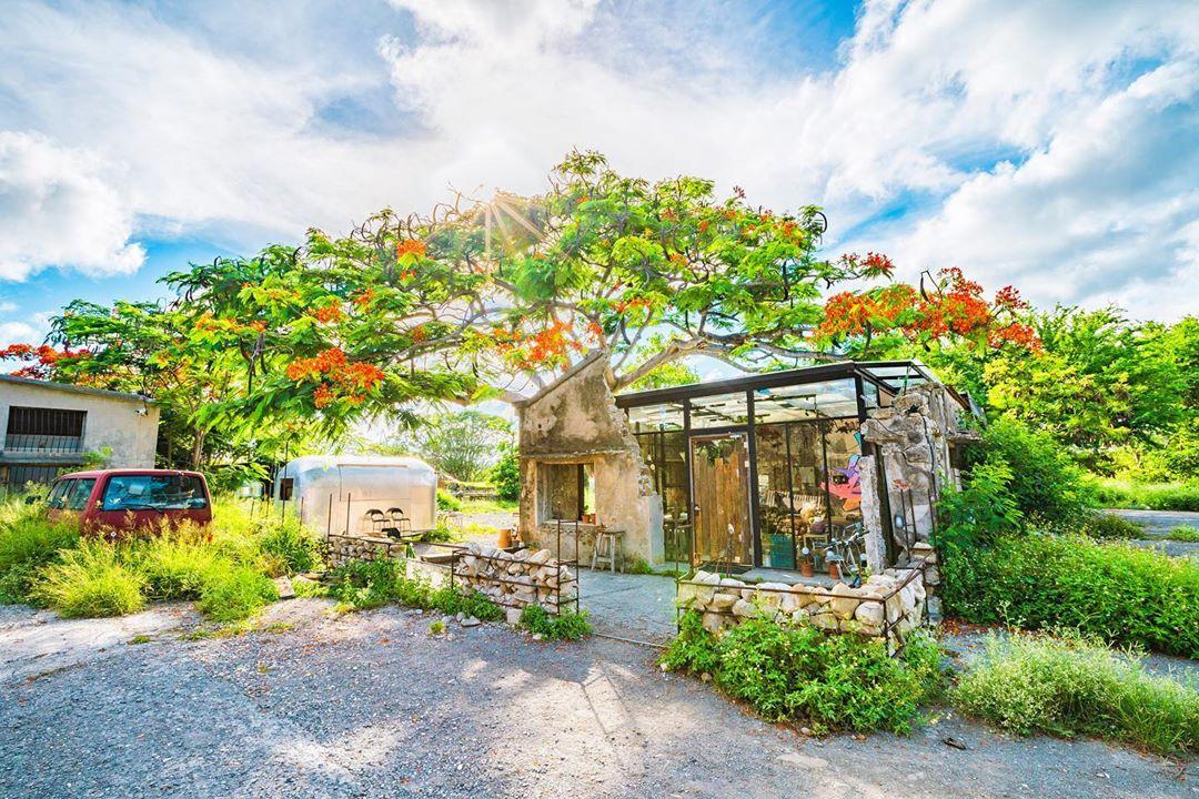 鳳凰花樹下的最美玻璃屋咖啡廳