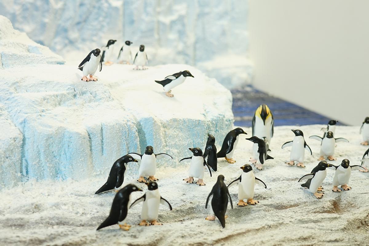 キッザニア南極研究所