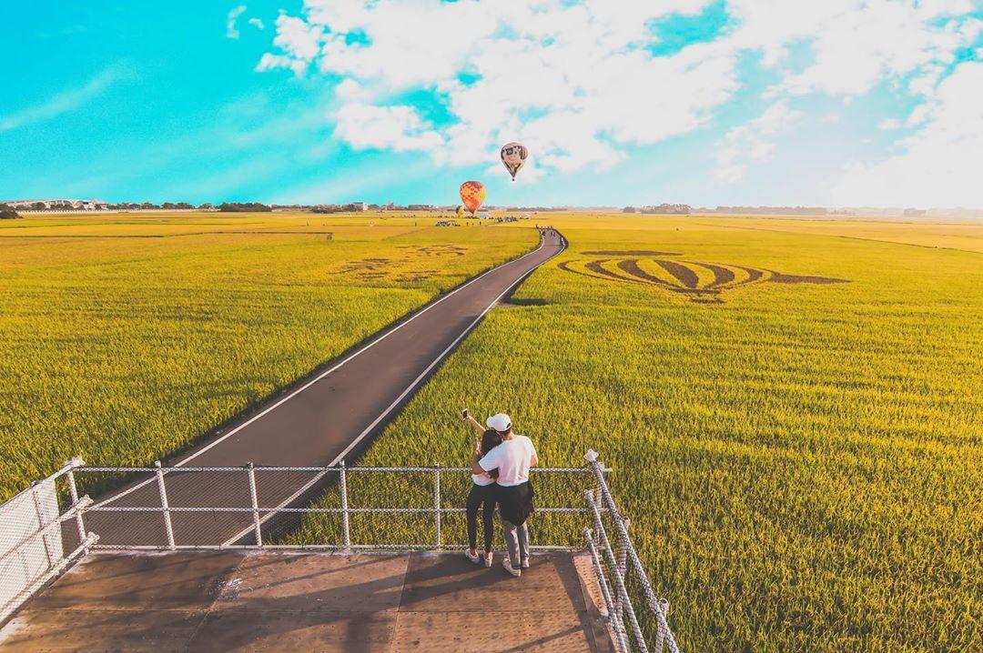 道路兩旁的黃金稻浪,與藍天白雲交織一幅天然美景。