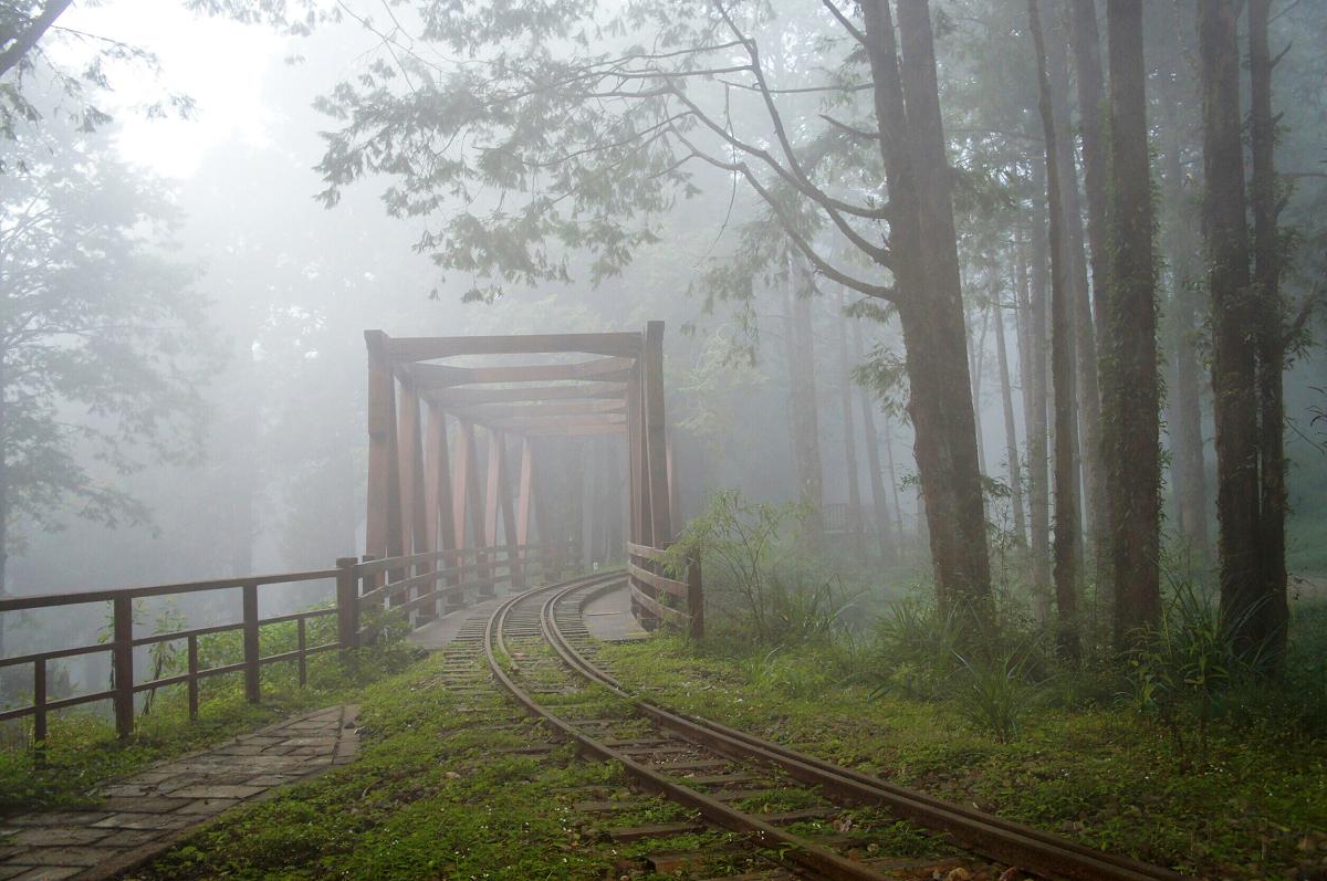 (迷霧中的水山步道 圖片來源:阿里山林業鐵路及文化資產管理處)