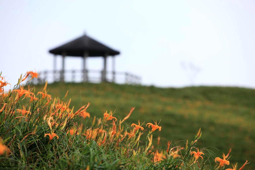 千禧亭 (圖片來源:台東觀光旅遊網)