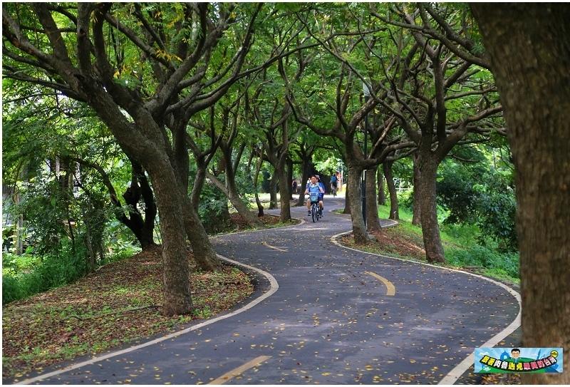 【台中景點】潭雅神綠園道~超夢幻的龍貓隧道!超優雅的S形天堂之路