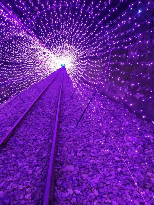 深澳自行車道沿線也特別打造「愛」字母光雕、星光隧道與夜光花海。圖/新北市觀光旅遊網