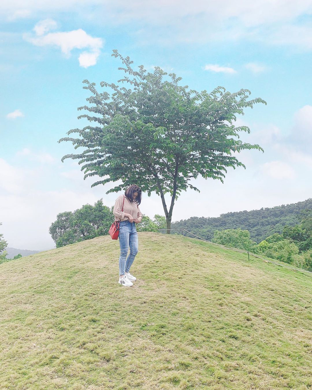 園內的綠色小山丘,也是網友最愛取景地。