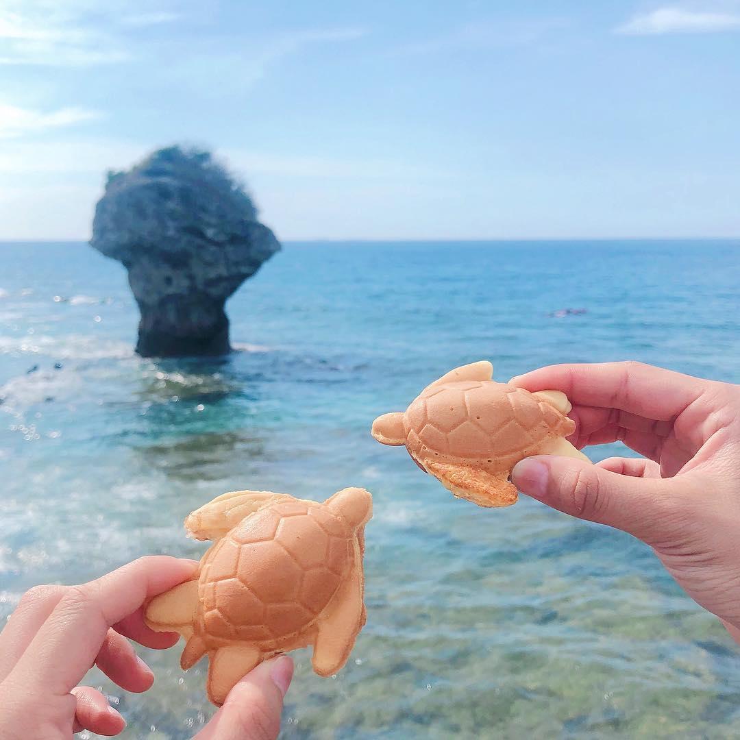 擬真的海龜燒,伴你度過炎炎夏日!