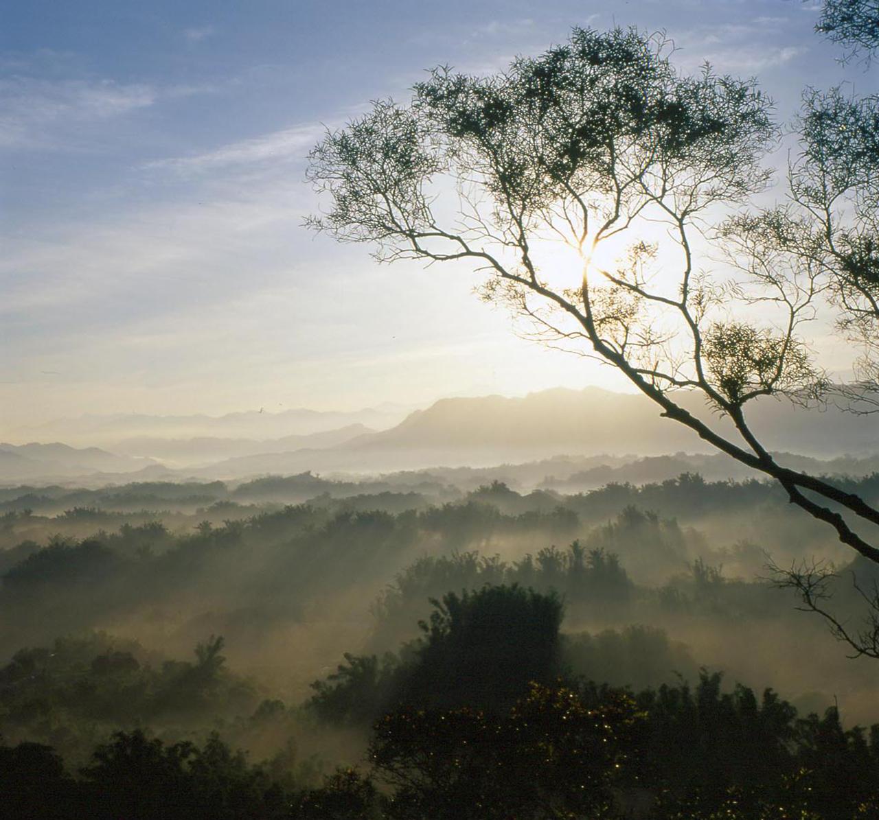 (圖片來源:西拉雅國家風景區)