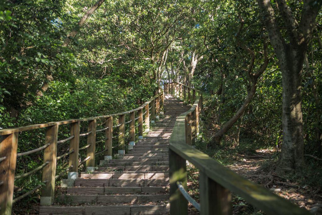 羊稠森林步道雖然位於市區,仍孕育豐富生態。圖/桃園觀光導覽網