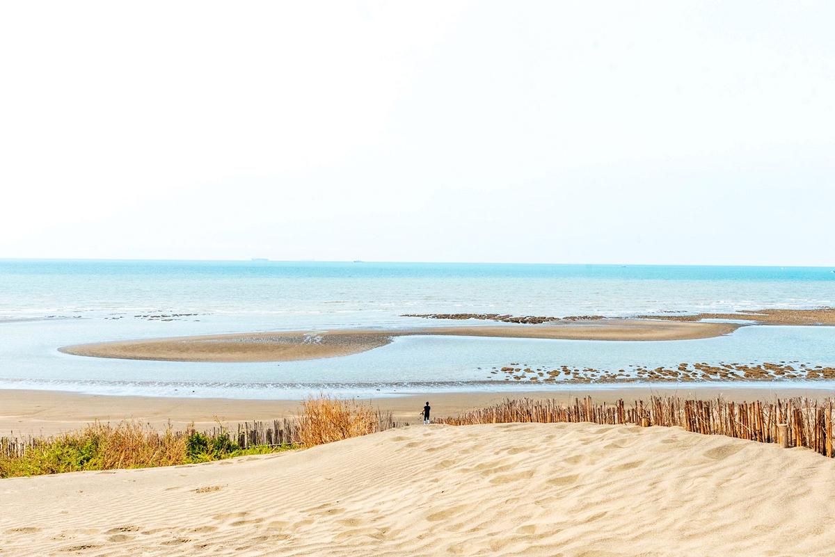 草漯沙丘美麗海岸生態 (圖片來源:桃園市政府)