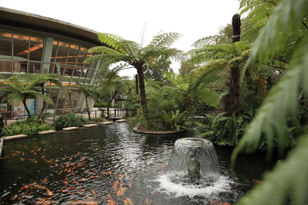 台東原生應用植物園運用生物科技,發展完善的藥用植物種原培育技術。圖/台東觀光旅遊網