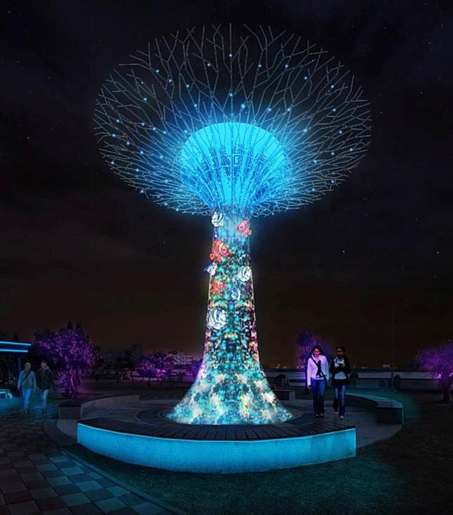 珊瑚樹 (圖片來源:澎湖國家風景區管理處)