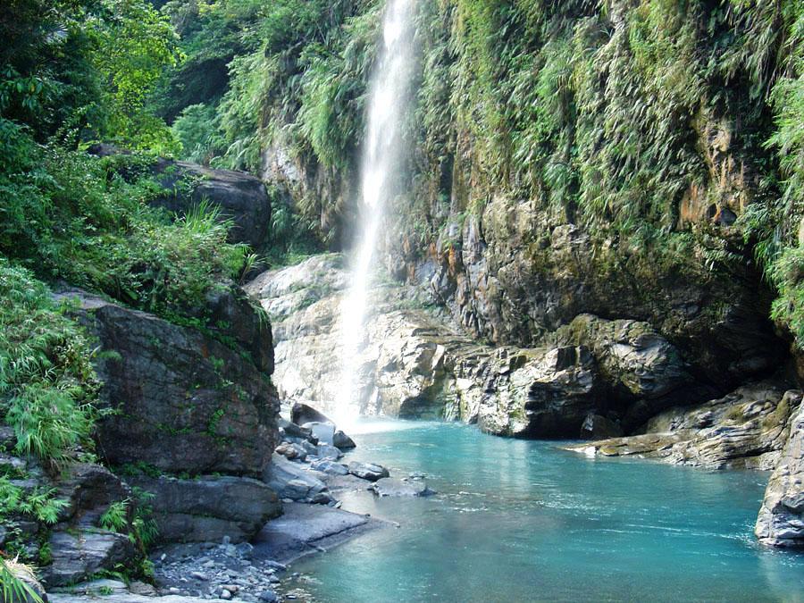 龍吟吊橋、富源瀑布位於富源森林遊樂區環山步道深處。圖/林務局