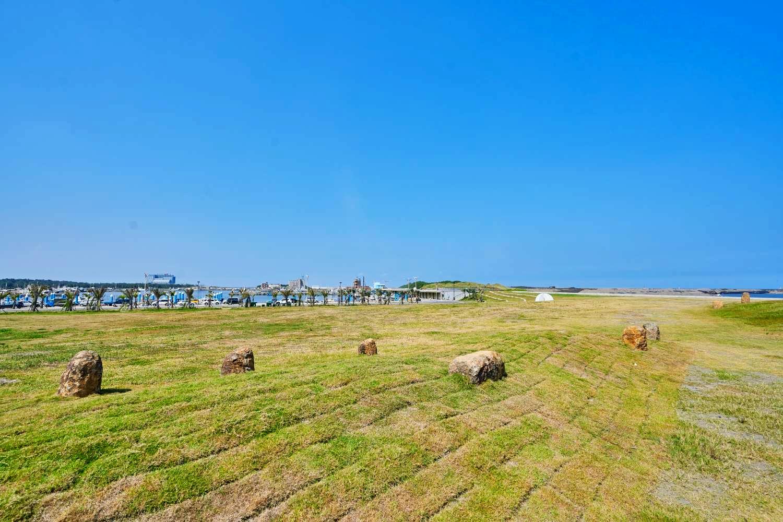 景觀石小草坪 (圖片來源:新竹市政府)