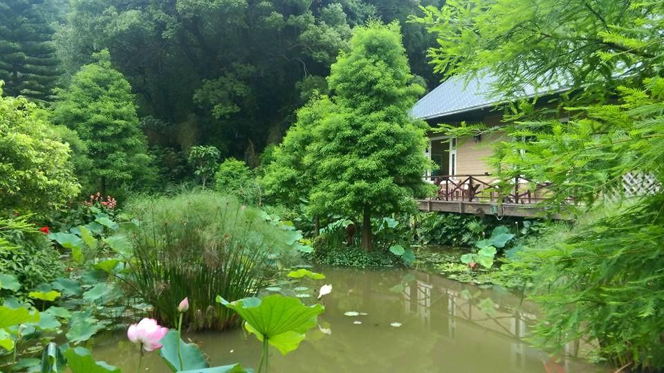 竹圃茶園運用高架法建築小木屋,避免對環境產生傷害。圖/竹圃茶園小木屋臉書粉絲專頁