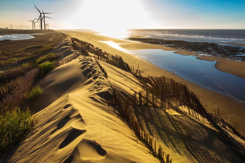沙丘呈現寂靜又蒼涼的美感 (圖片來源:桃園觀光導覽網)