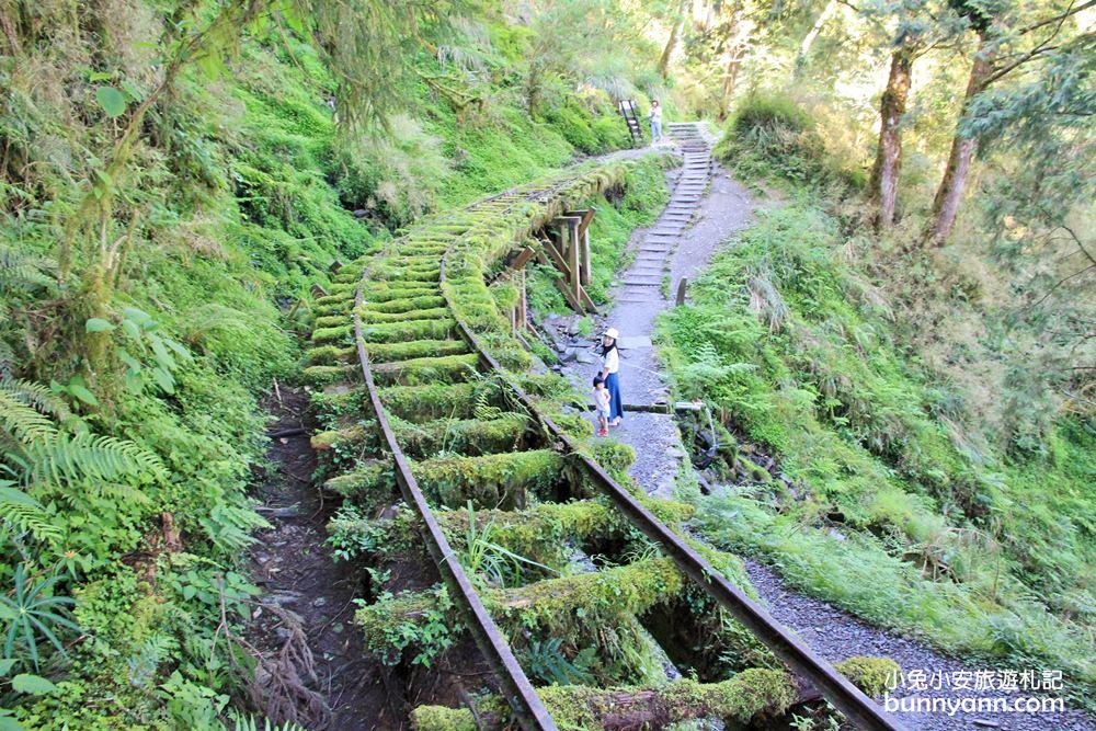 宜蘭太平山一日遊
