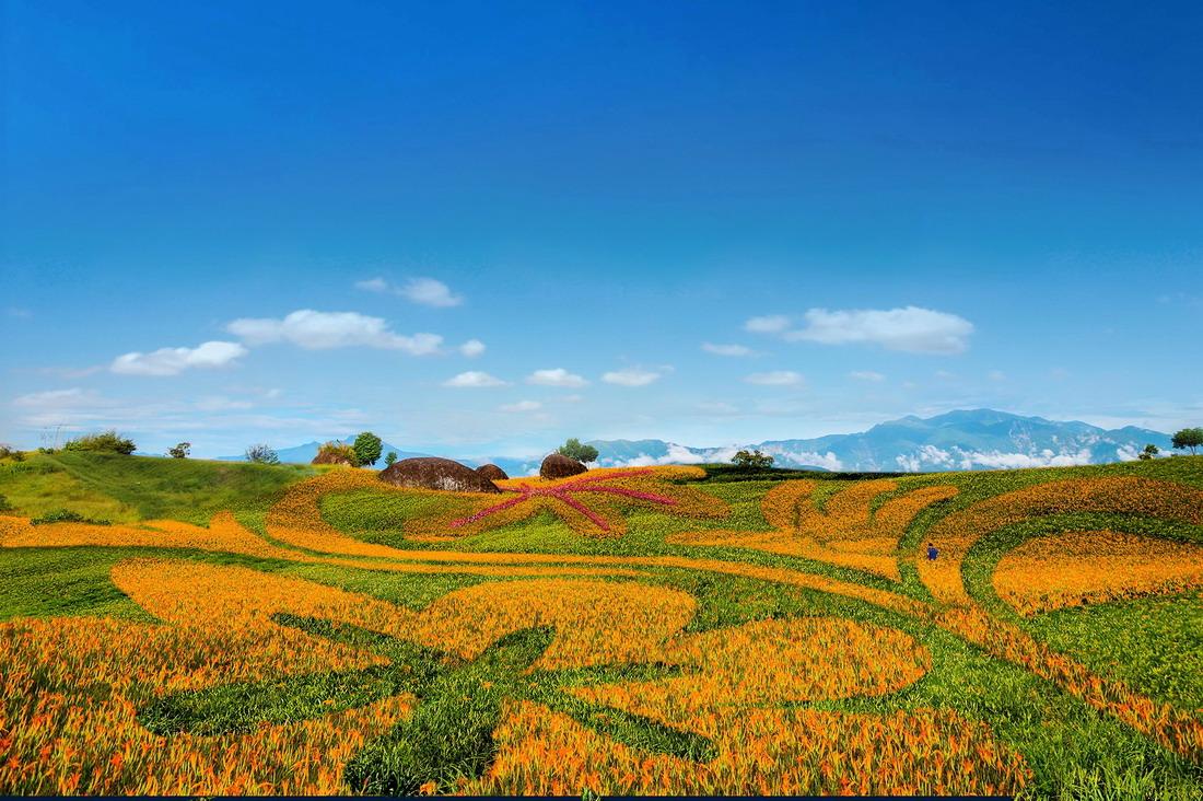 六十石山與赤科山金針花季自8/3至9/15為止,把握機會一睹黃澄澄花毯的風采。圖/Yahoo奇摩旅遊綜合報導