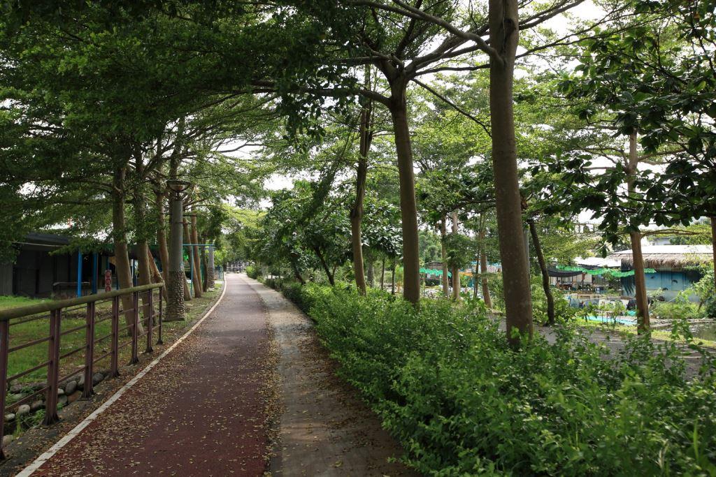 東豐自行車道兩側綠意夾道,宛若一條綠色大甲溪。圖/台中觀光旅遊網