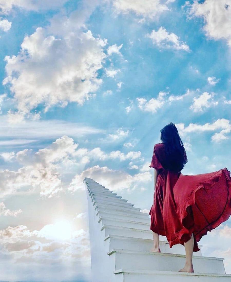 通往天堂的階梯 (圖片來源:Café Nông Trại Vui Vẻ Sunny Farm – Dalat FB)