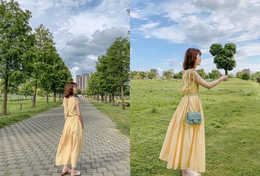又有萬坪公園之名的南興公園,除了米奇樹,還有落羽松大道。