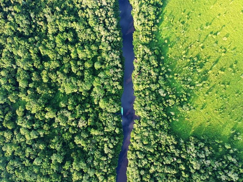 圖/印尼新首都預定地加里曼丹,曾與亞馬遜雨林享有地球綠肺美稱。