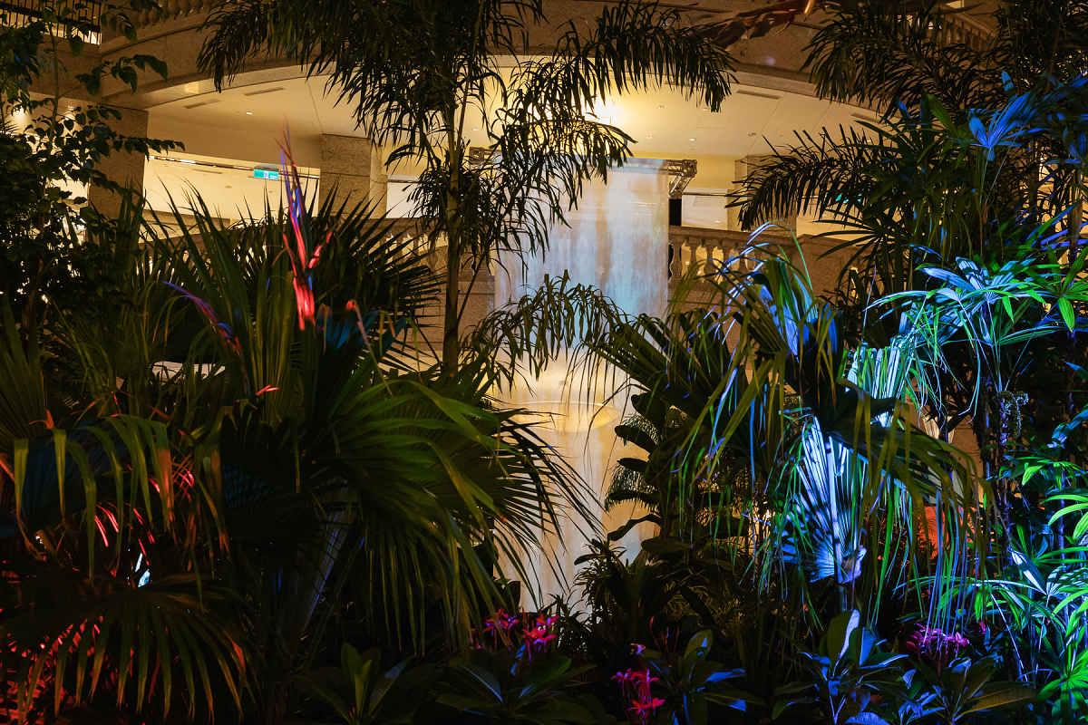 隱約聽到熱帶雨林純淨大自然的聲音(圖片來源:BELLAVITA)