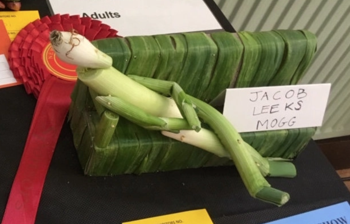 Hester Feld's creation 'Jacob Leeks Mogg' was only good enough for second prize. (SWNS)