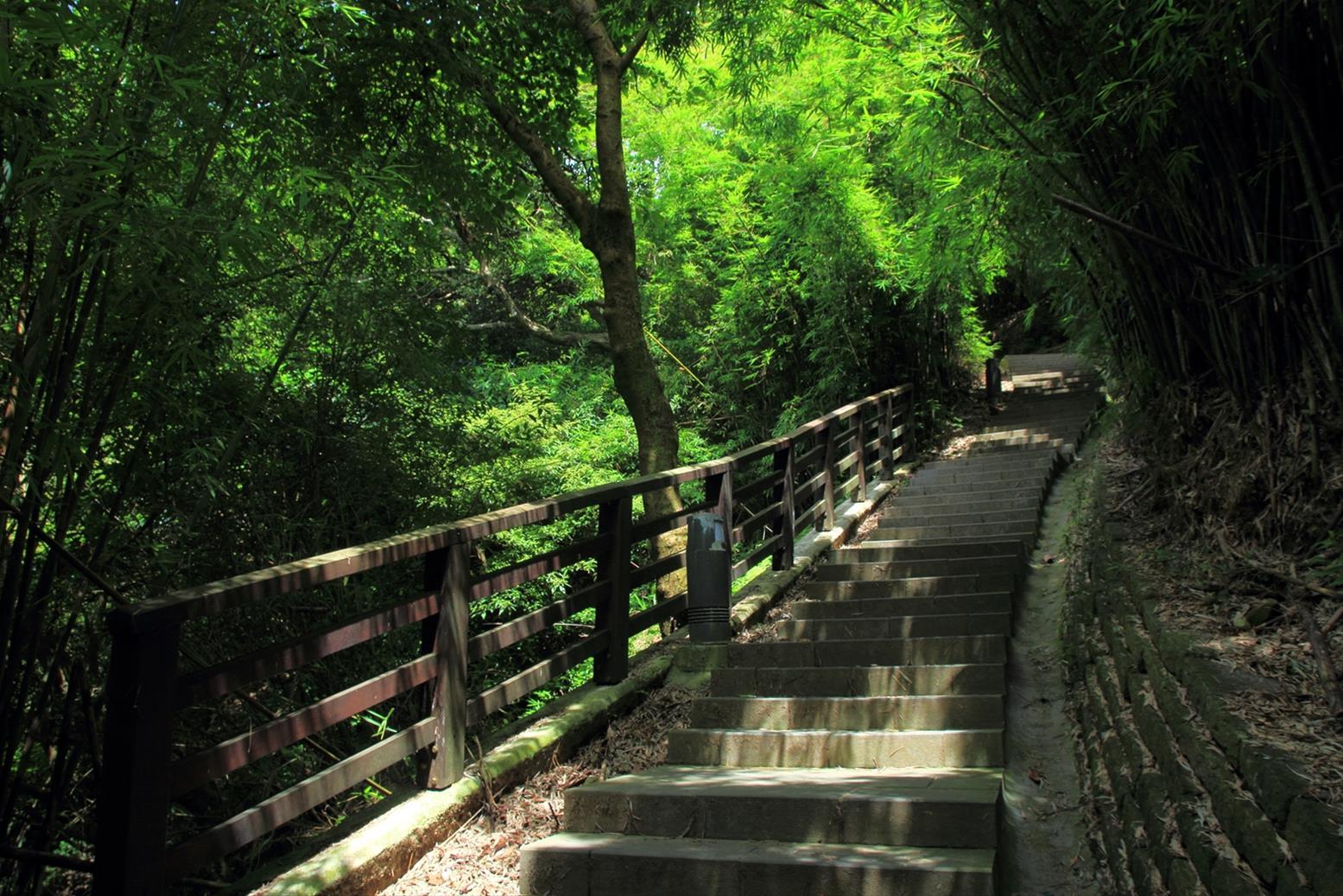 楓櫃斗湖步道(圖片來源:北海岸及觀音山國家風景區)