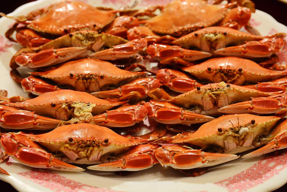 清蒸萬里蟹(三點蟹) (圖片來源:新北市政府)