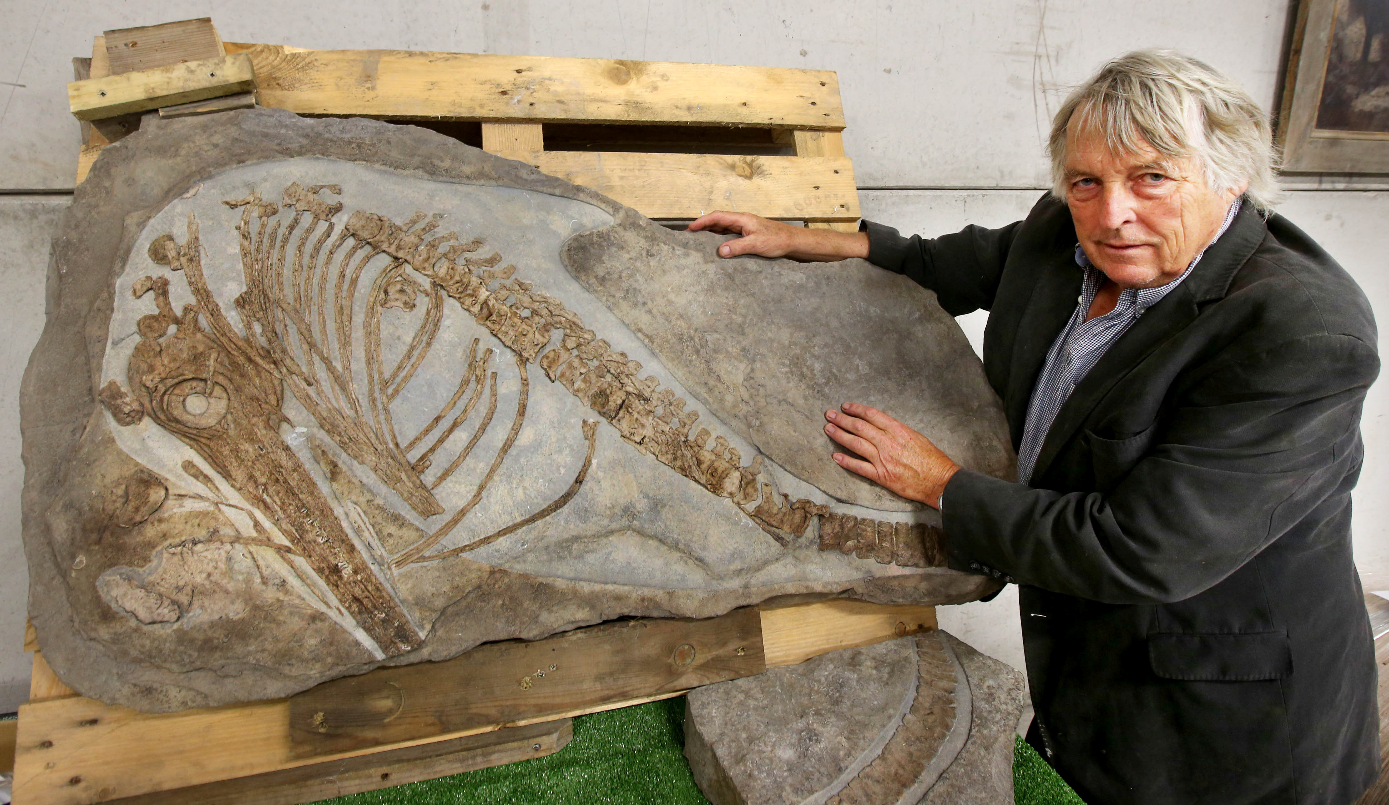 Cider brandy maker Julian Temperley next to the 90-million-year-old ichthyosaurus fossil (SWNS)