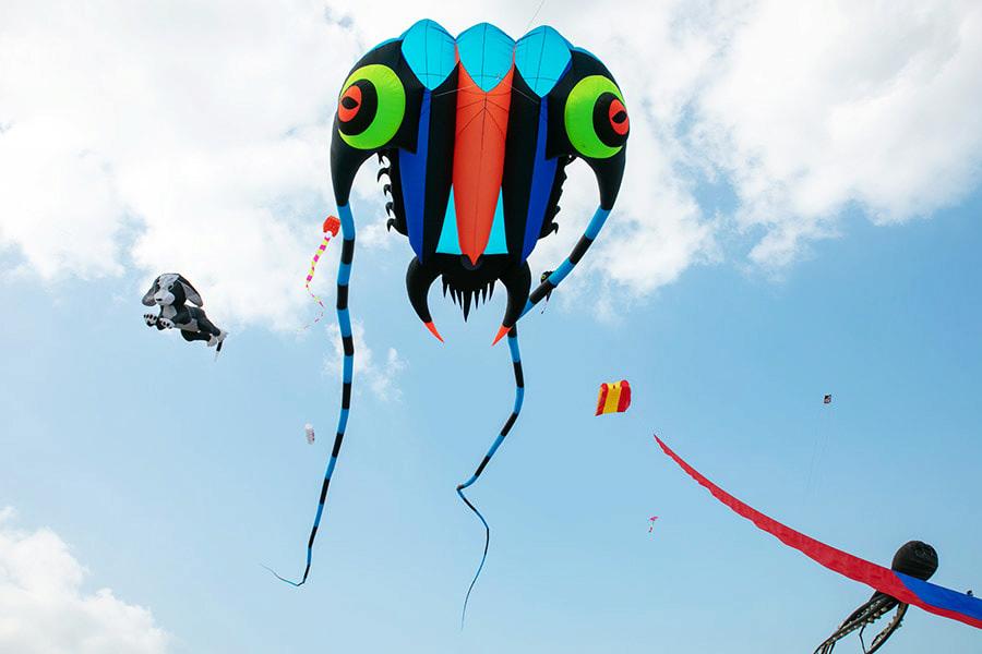 (圖片來源:2019新北市北海岸國際風箏節)