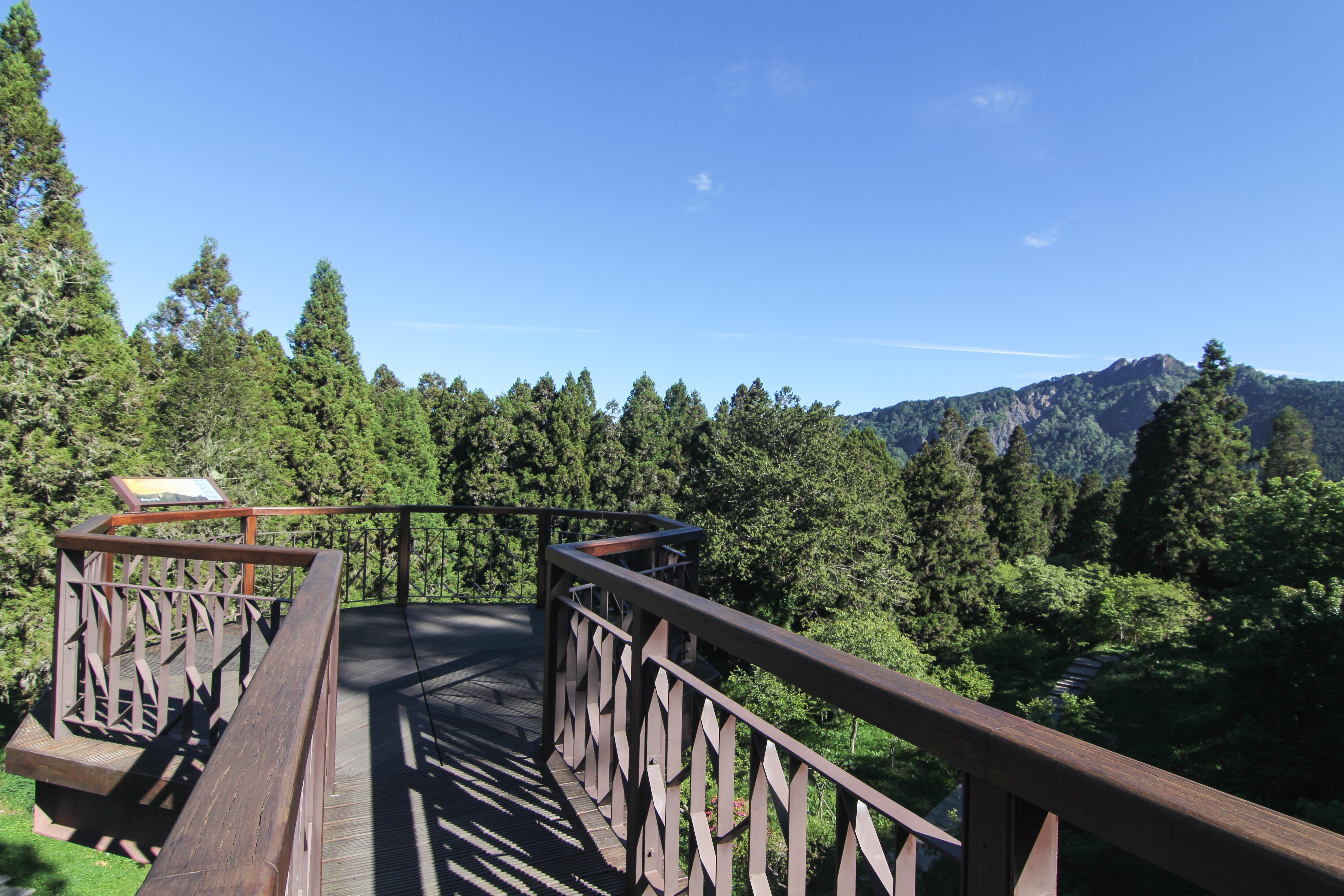 阿里山森林遊樂區總面積約1400公頃,四周高山環繞、氣溫涼爽,景觀氣象萬千。圖/觀光局