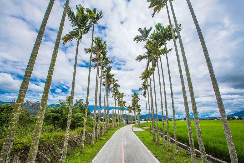 關山自行車道為全台第一個以自行車道為主建設的環鎮車道,全長12公里。圖/花東縱谷國家風景區