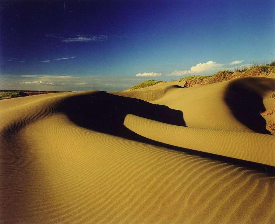 頂頭額沙洲被稱為「台版撒哈拉沙漠」,展現淒涼荒蕪之美。圖/台南旅遊網