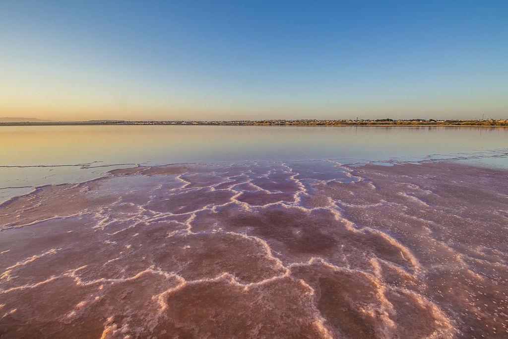 托雷維耶哈鹽湖 (Photo by Moisés Pastor, License: CC BY-SA 3.0 es, Wikimedia Commons提供)