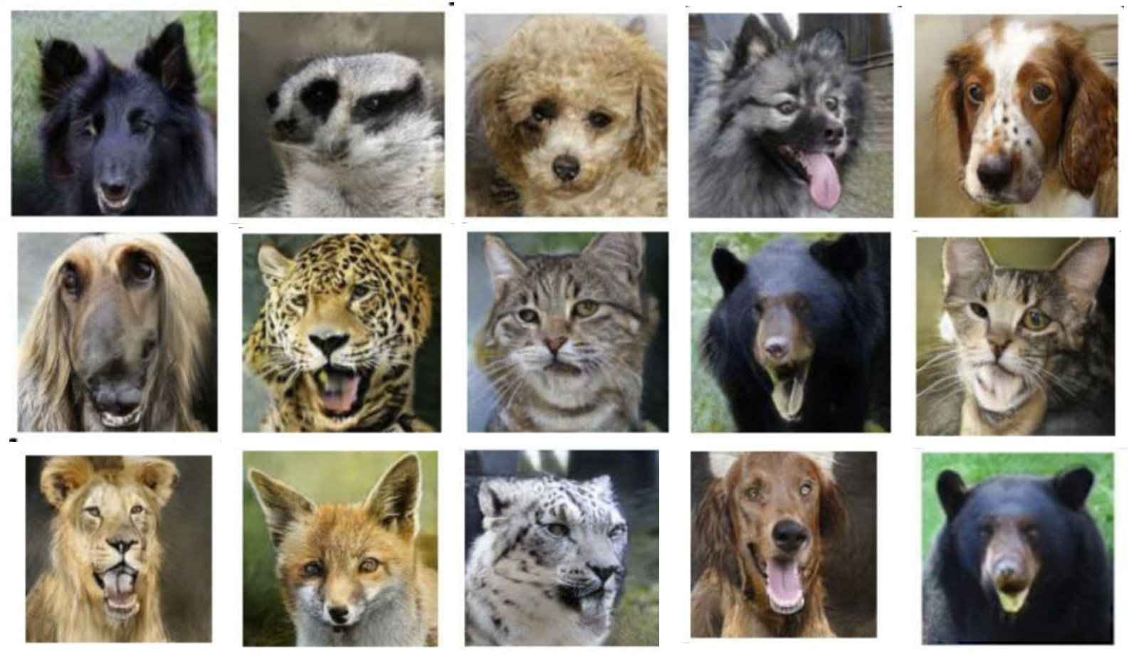 Nvidia AI animal smile