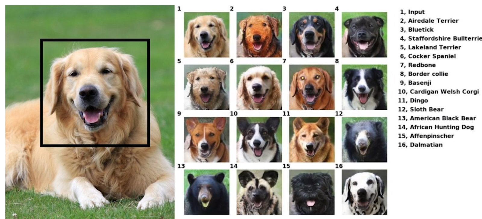 Nvidia AI animal smile