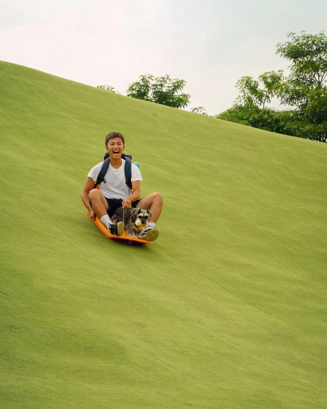 大草皮是絕佳滑草景點,大人小孩都樂此不疲。