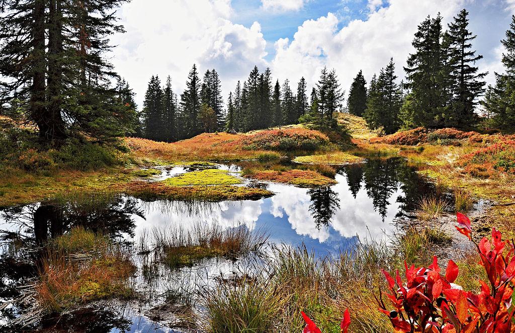 巴伐利亞阿爾卑斯山脈 (Photo by NorbertWLang, License: CC BY-SA 3.0, Wikimedia Commons提供)